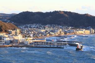 葉山港と住宅街の写真素材 [FYI03005652]