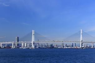 横浜ベイブリッジとみなとみらい21の写真素材 [FYI03005657]