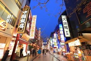 横浜 中華街の夜景の写真素材 [FYI03005680]