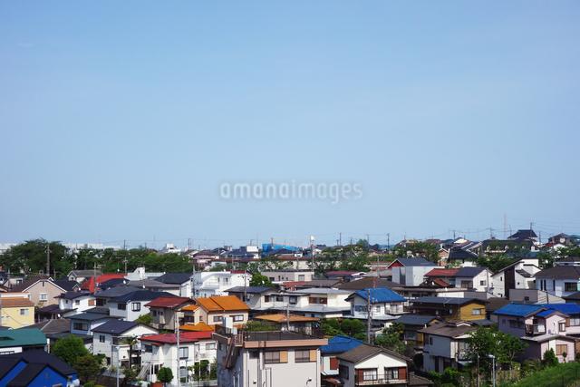 郊外の住宅街の写真素材 [FYI03005810]