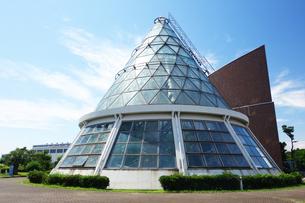 横浜市高齢者研修施設の展示温室の写真素材 [FYI03005842]