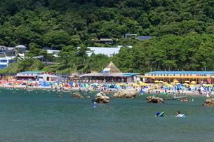 葉山 一色海水浴場の写真素材 [FYI03005885]