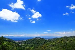 湘南国際村からの富士山の写真素材 [FYI03005906]