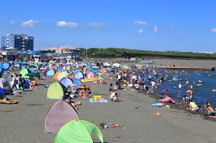 夏のサザンビーチちがさきの写真素材 [FYI03005929]