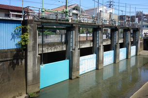 神奈川県川崎市 長尾橋の五連水門の写真素材 [FYI03005934]
