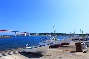 神奈川県 三崎漁港の写真素材 [FYI03005981]