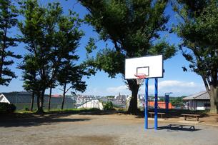 横浜市 日影山公園のバスケットゴールの写真素材 [FYI03006000]