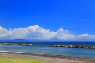 三浦海岸付近のテトラポッドの写真素材 [FYI03006013]