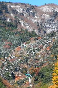 雪の大山ケーブルカーの写真素材 [FYI03006102]