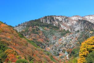 雪の大山ケーブルカーの写真素材 [FYI03006140]