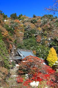 秋の大山寺の写真素材 [FYI03006146]
