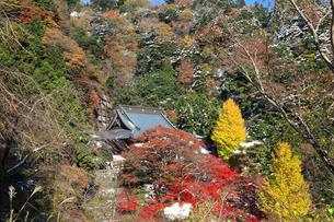 秋の大山寺の写真素材 [FYI03006147]