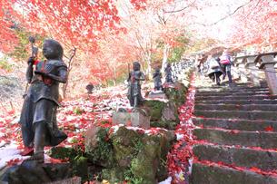 大山寺の紅葉の写真素材 [FYI03006150]
