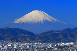 神奈川県秦野市から望む富士山の写真素材 [FYI03006155]