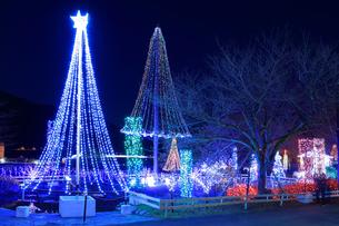 神奈川県 宮ヶ瀬のクリスマスイルミネーションの写真素材 [FYI03006204]