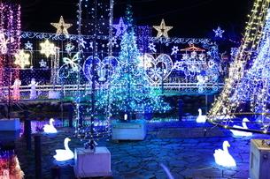 神奈川県 宮ヶ瀬のクリスマスイルミネーションの写真素材 [FYI03006209]