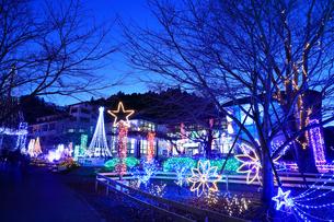 神奈川県 宮ヶ瀬のクリスマスイルミネーションの写真素材 [FYI03006212]