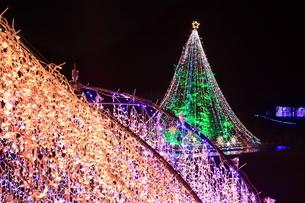 神奈川県 宮ヶ瀬のクリスマスイルミネーションの写真素材 [FYI03006219]