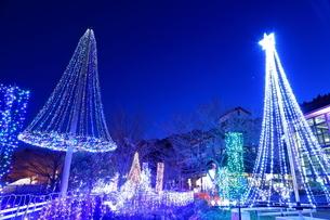 神奈川県 宮ヶ瀬のクリスマスイルミネーションの写真素材 [FYI03006225]