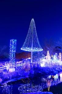 神奈川県 宮ヶ瀬のクリスマスイルミネーションの写真素材 [FYI03006227]