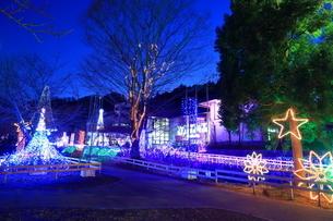 神奈川県 宮ヶ瀬のクリスマスイルミネーションの写真素材 [FYI03006228]