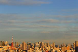 東京のビル群の写真素材 [FYI03006231]
