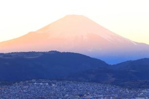 神奈川県秦野市から望む富士山の写真素材 [FYI03006270]