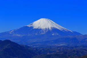 神奈川県松田山から望む富士山の写真素材 [FYI03006277]