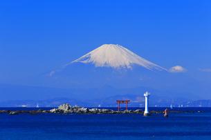 富士山と葉山灯台の写真素材 [FYI03006281]