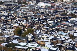 降雪した秦野市の住宅街の写真素材 [FYI03006327]
