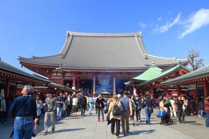 浅草寺の本堂の写真素材 [FYI03006357]