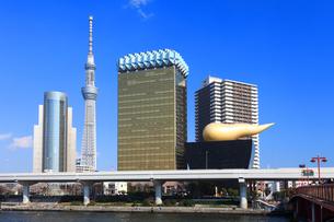 東京スカイツリーの写真素材 [FYI03006365]