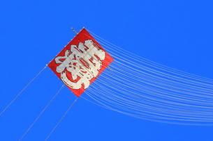 青空にあがる凧の写真素材 [FYI03006450]