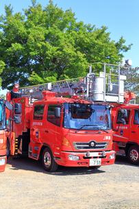 消防車の写真素材 [FYI03006494]