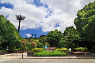 紫陽花園のある相模原北公園の写真素材 [FYI03006495]