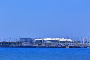 江の島ヨットハーバーの写真素材 [FYI03006517]