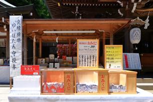 江の島 江島神社のおみくじの写真素材 [FYI03006522]