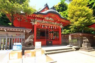 江の島 江島神社の中津宮の写真素材 [FYI03006529]