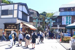 江の島 江島神社の鳥居の写真素材 [FYI03006531]