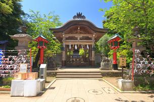 江の島 江島神社の奥津宮の写真素材 [FYI03006535]