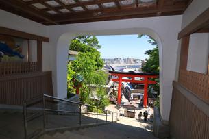 江の島 江島神社の瑞心門の写真素材 [FYI03006555]