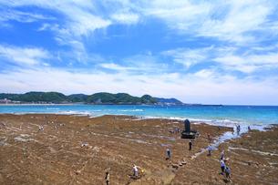 大潮の湘南海岸の写真素材 [FYI03006558]