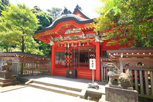 江の島 江島神社の中津宮の写真素材 [FYI03006587]