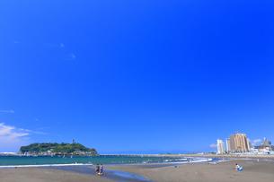 新緑の江の島の写真素材 [FYI03006594]