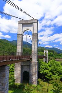 秦野戸川公園の風の吊り橋の写真素材 [FYI03006754]