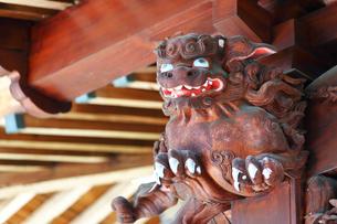 神奈川県 白笹稲荷神社の写真素材 [FYI03006762]
