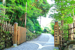 大磯城山公園 旧吉田茂邸地区の写真素材 [FYI03006777]