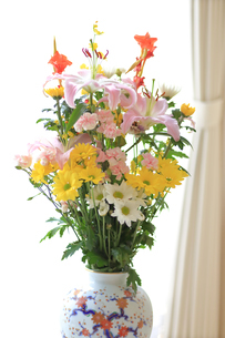 仏花の写真素材 [FYI03006783]