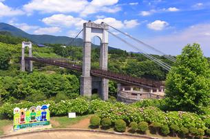 秦野戸川公園の顔出しパネルの写真素材 [FYI03006803]