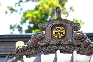 神奈川県 白笹稲荷神社の写真素材 [FYI03006810]